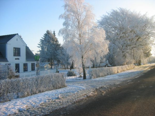Winter in Denmark.