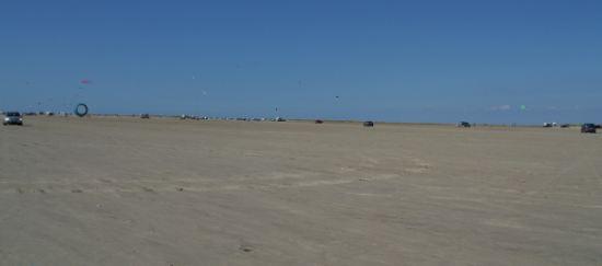 Kite's at Romo island.